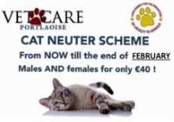 Cat Neuter Scheme Feb 16