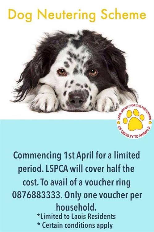 Dog Neutering Scheme