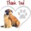 Thank you from the LSPCA